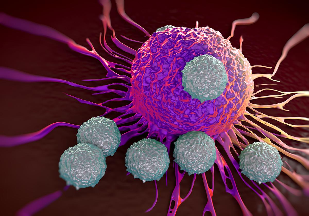 Immunology small